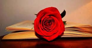 Celebració de Sant Jordi, des de l'associació volem regalar un llibre i una rosa a tots els associats i associades